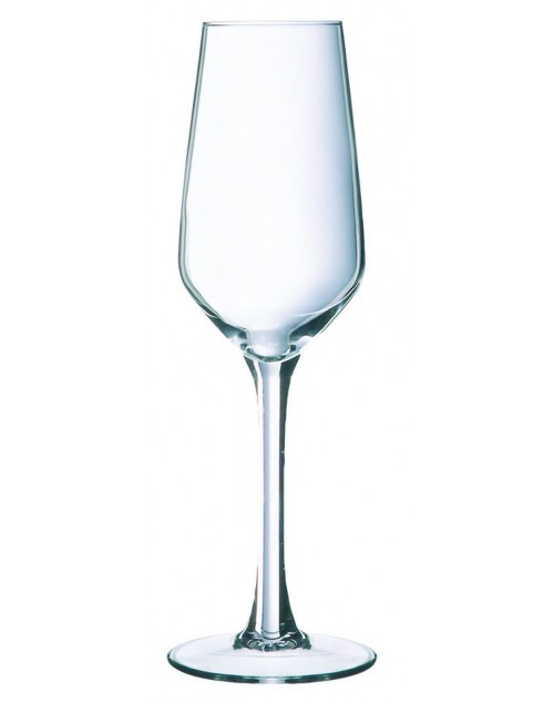 Copa Flauta Lineal 18 cl. x 24 unidades